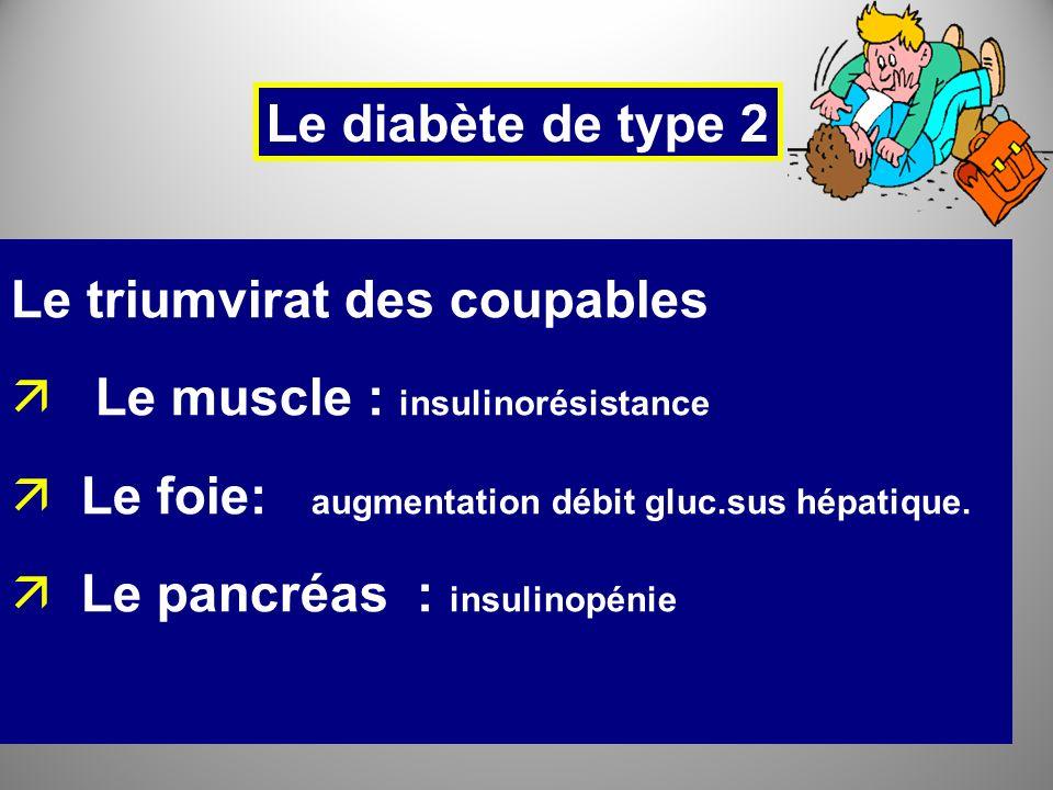 Le triumvirat des coupables Le muscle : insulinorésistance
