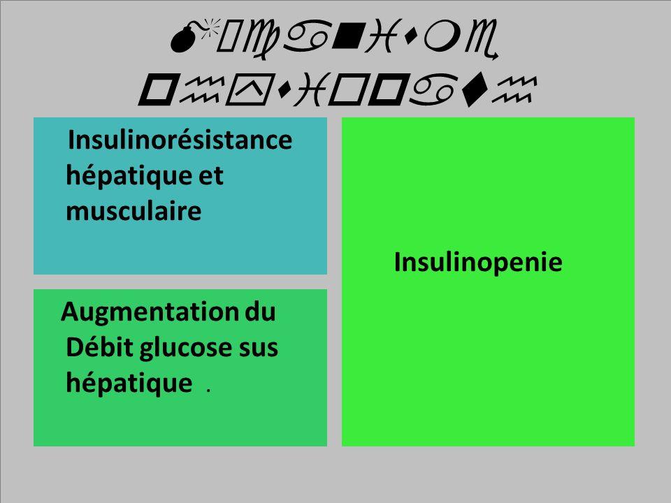 Mécanisme physiopath Insulinorésistance hépatique et musculaire