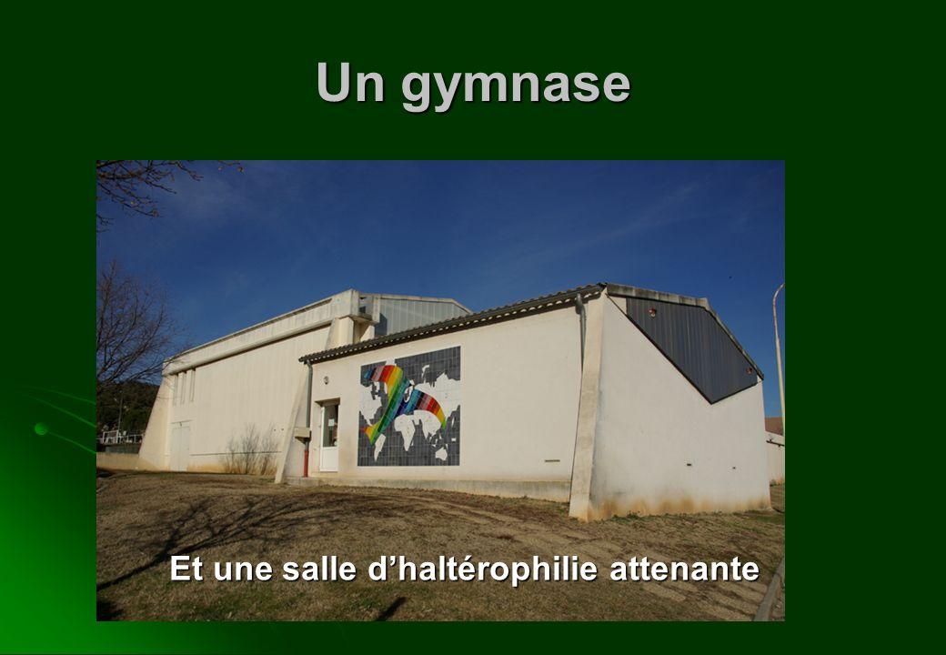 Un gymnase Et une salle d'haltérophilie attenante