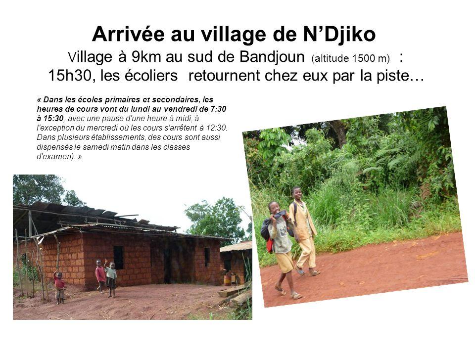 Arrivée au village de N'Djiko Village à 9km au sud de Bandjoun (altitude 1500 m) : 15h30, les écoliers retournent chez eux par la piste…