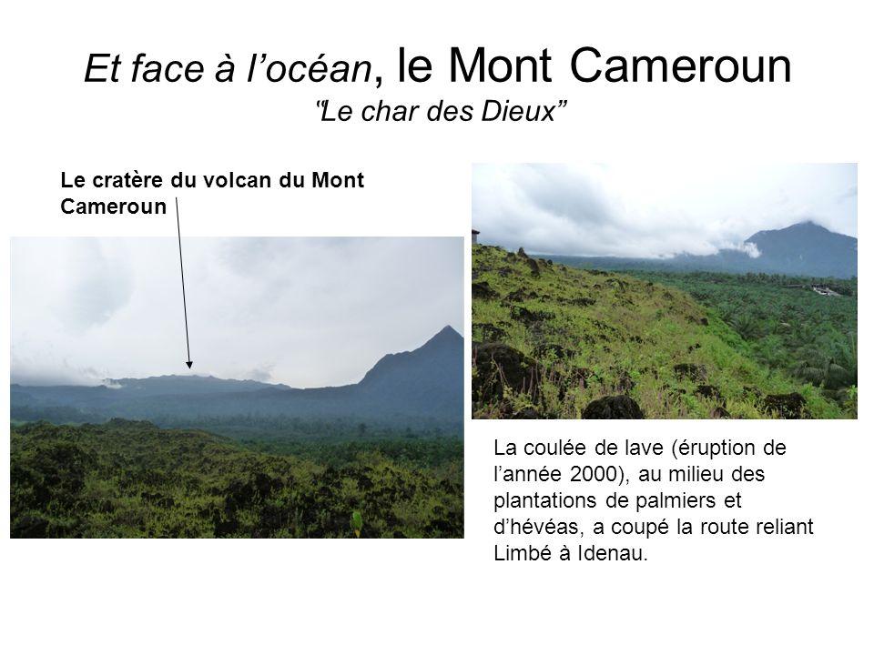 """Et face à l'océan, le Mont Cameroun """"Le char des Dieux"""