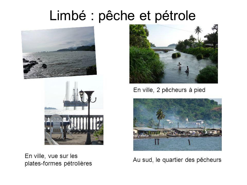 Limbé : pêche et pétrole