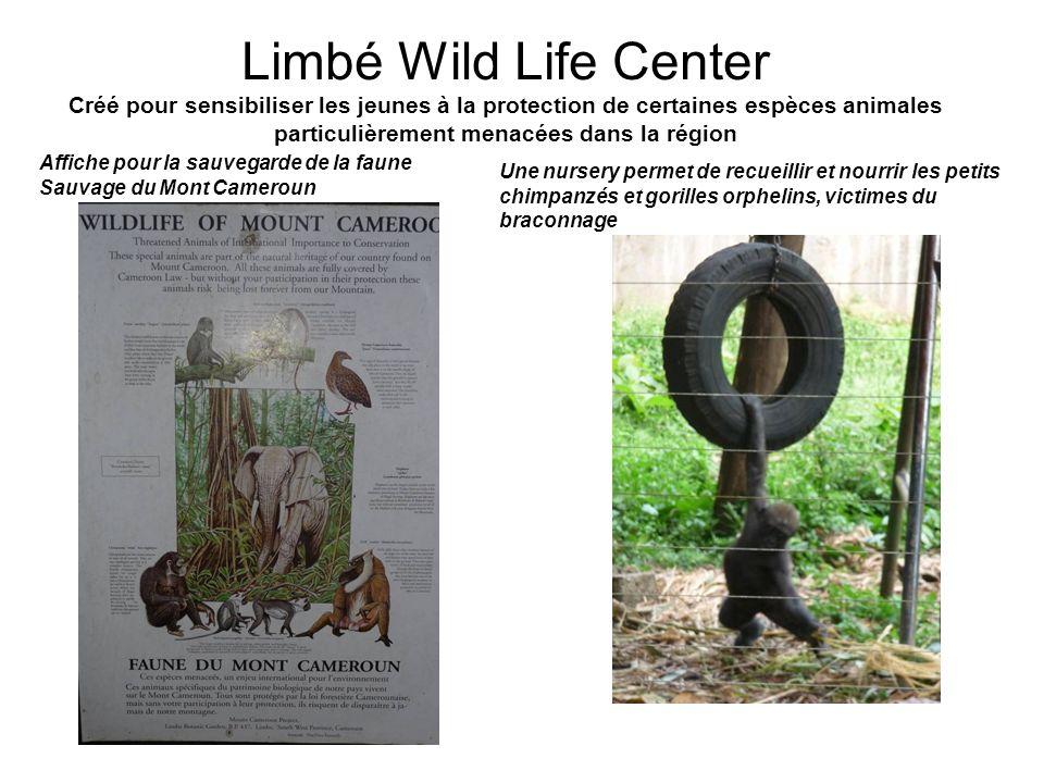 Limbé Wild Life Center Créé pour sensibiliser les jeunes à la protection de certaines espèces animales particulièrement menacées dans la région