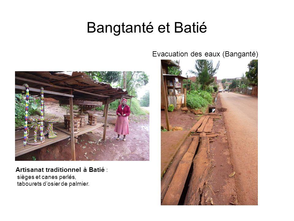 Bangtanté et Batié Evacuation des eaux (Banganté)