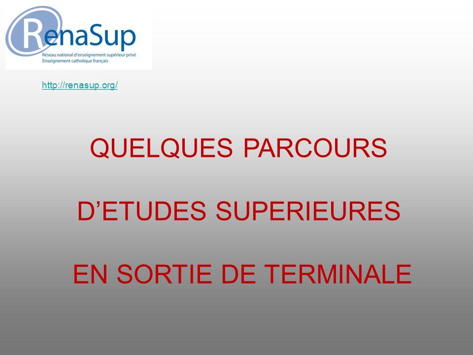 QUELQUES PARCOURS D'ETUDES SUPERIEURES EN SORTIE DE TERMINALE