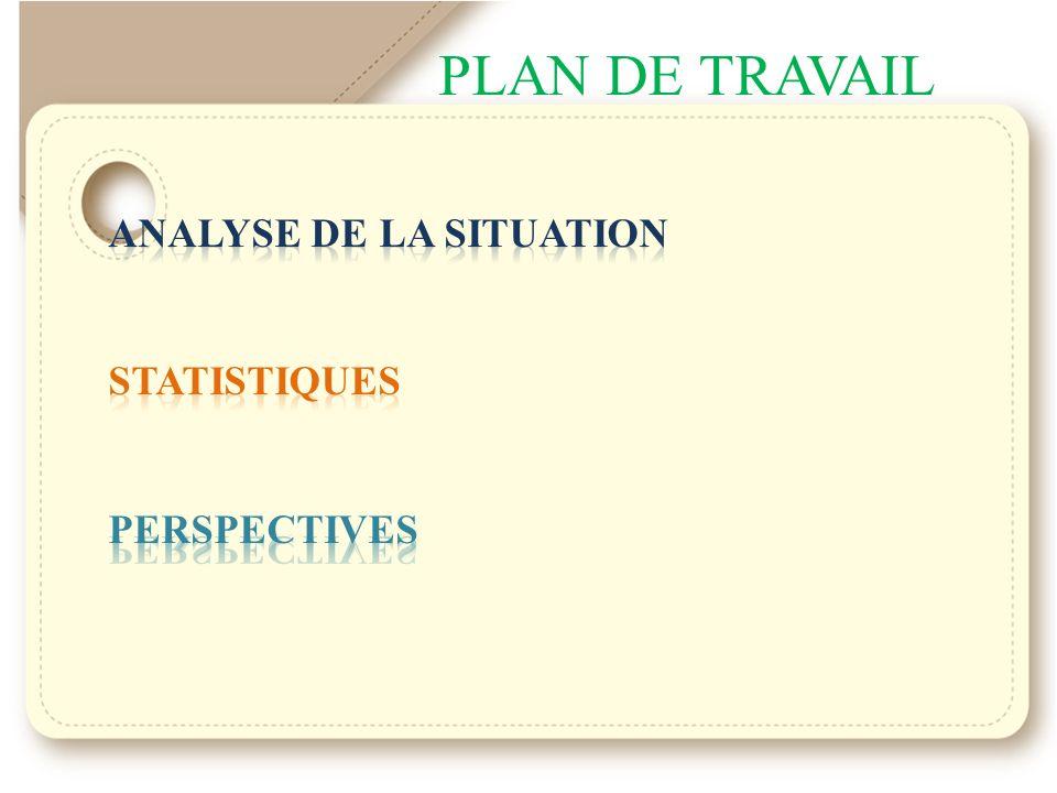 PLAN DE TRAVAIL ANALYSE DE LA SITUATION STATISTIQUES PERSPECTIVES