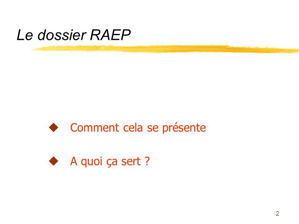 Le dossier RAEP Comment cela se présente A quoi ça sert