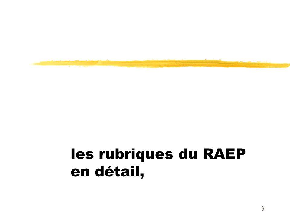 les rubriques du RAEP en détail,