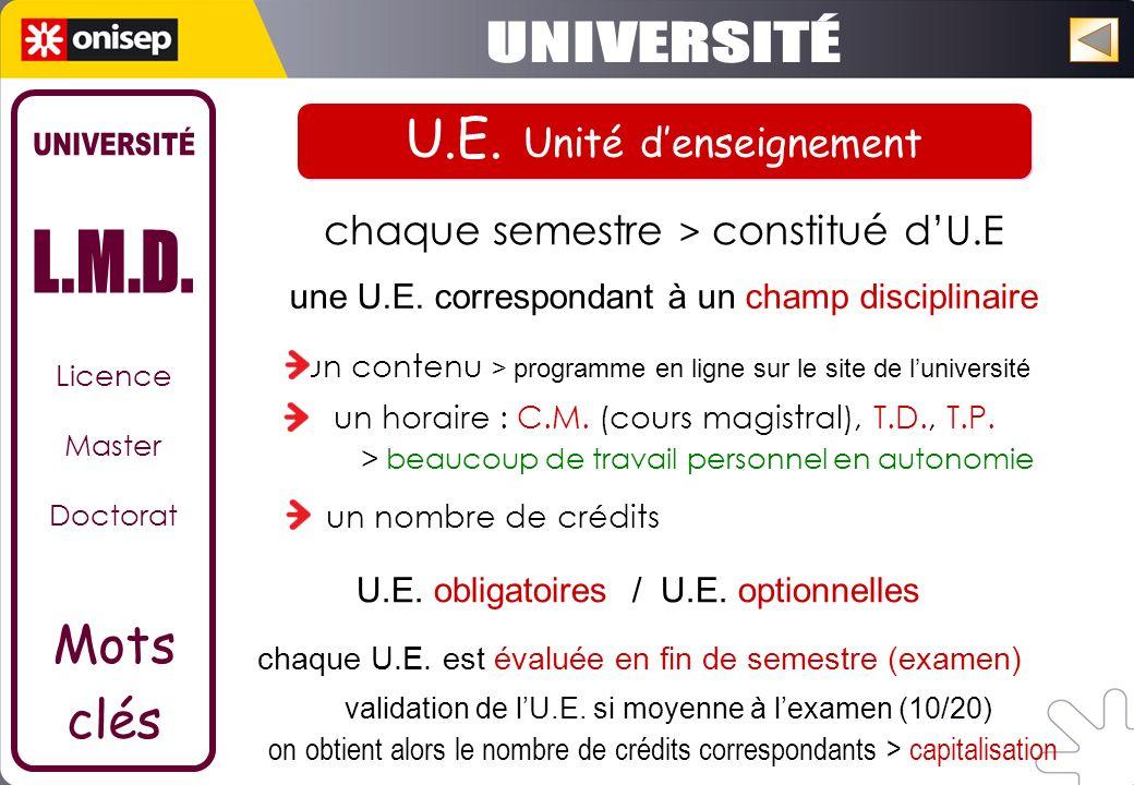U.E. Unité d'enseignement UNIVERSITÉ