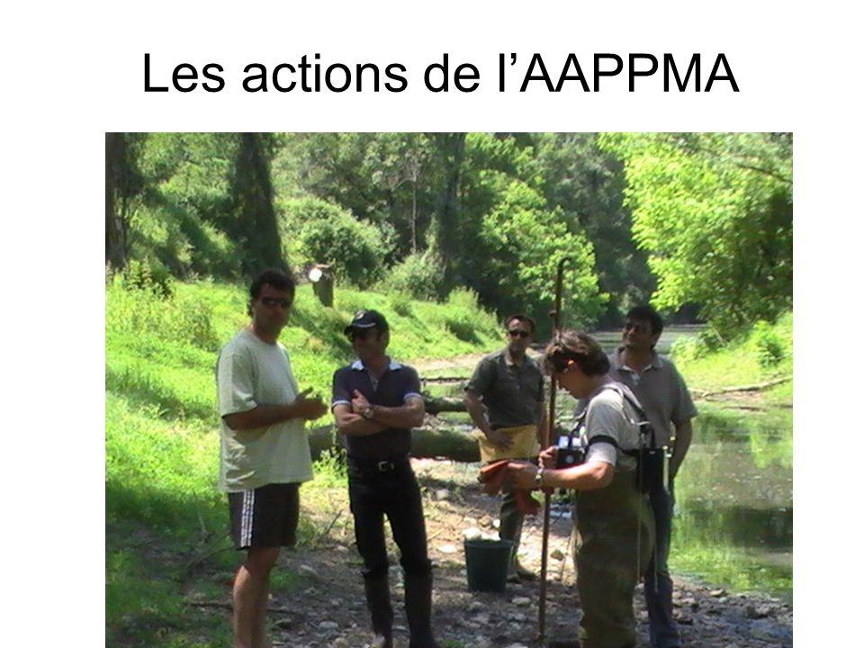 Les actions de l'AAPPMA