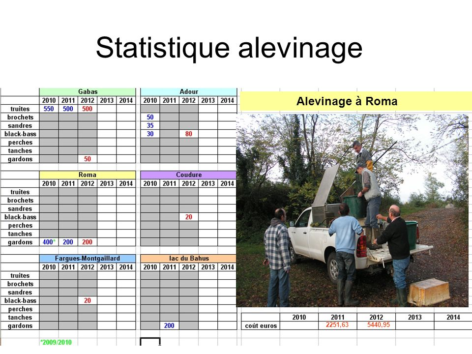Statistique alevinage