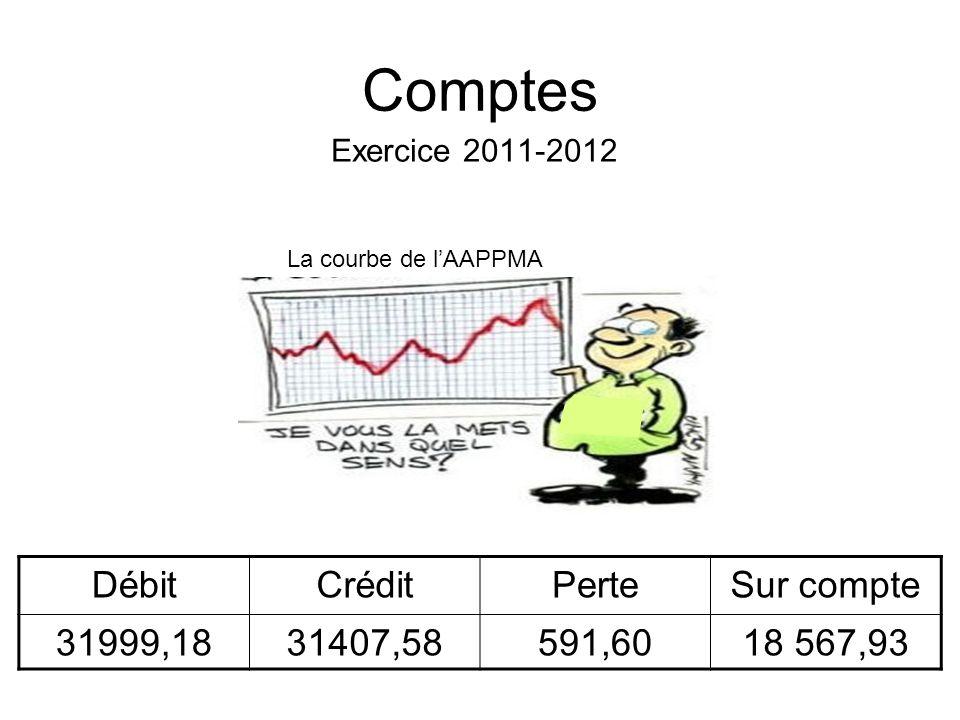 Comptes Débit Crédit Perte Sur compte 31999,18 31407,58 591,60
