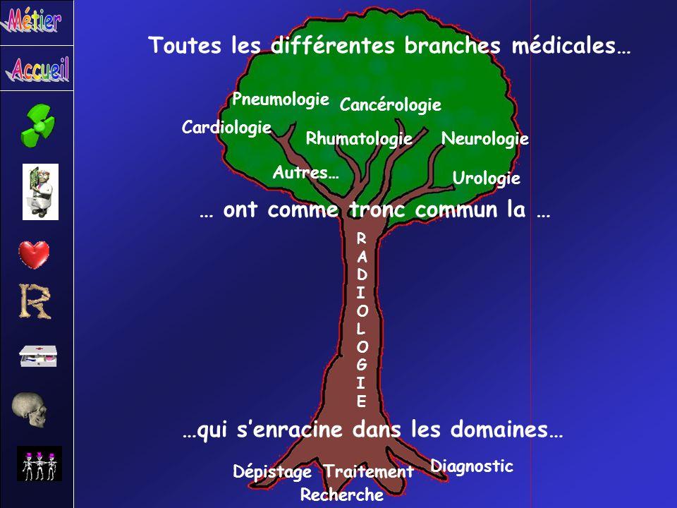 Toutes les différentes branches médicales…