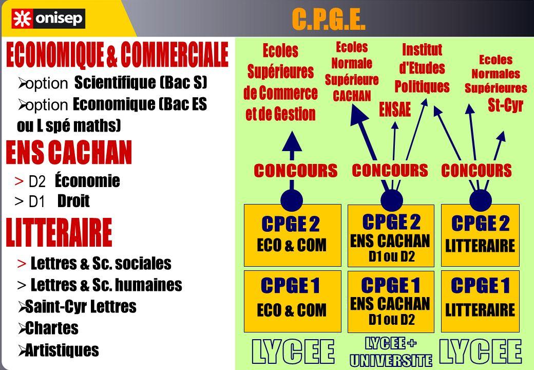 ECONOMIQUE & COMMERCIALE