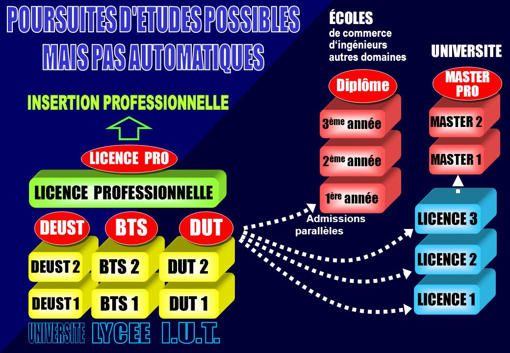 POURSUITES D ETUDES POSSIBLES INSERTION PROFESSIONNELLE