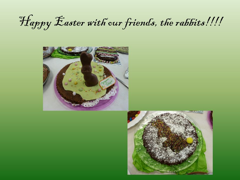 Happy Easter with our friends, the rabbits!!!!