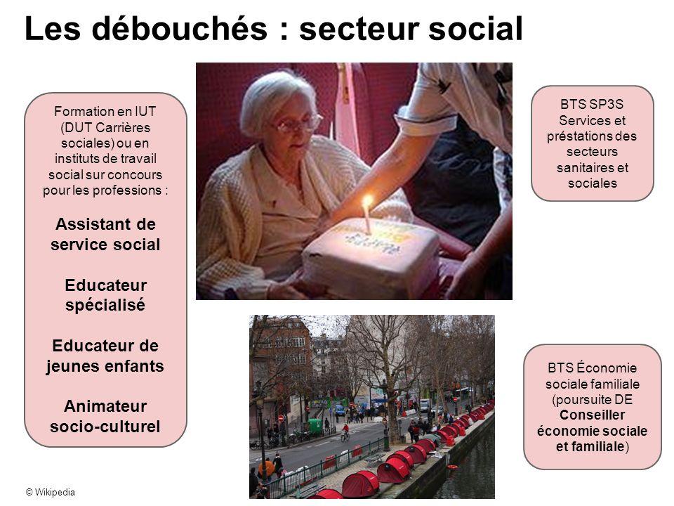 Les débouchés : secteur social