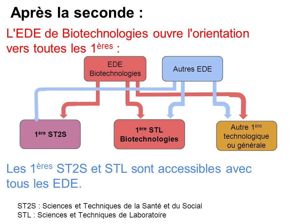 1ère STL Biotechnologies