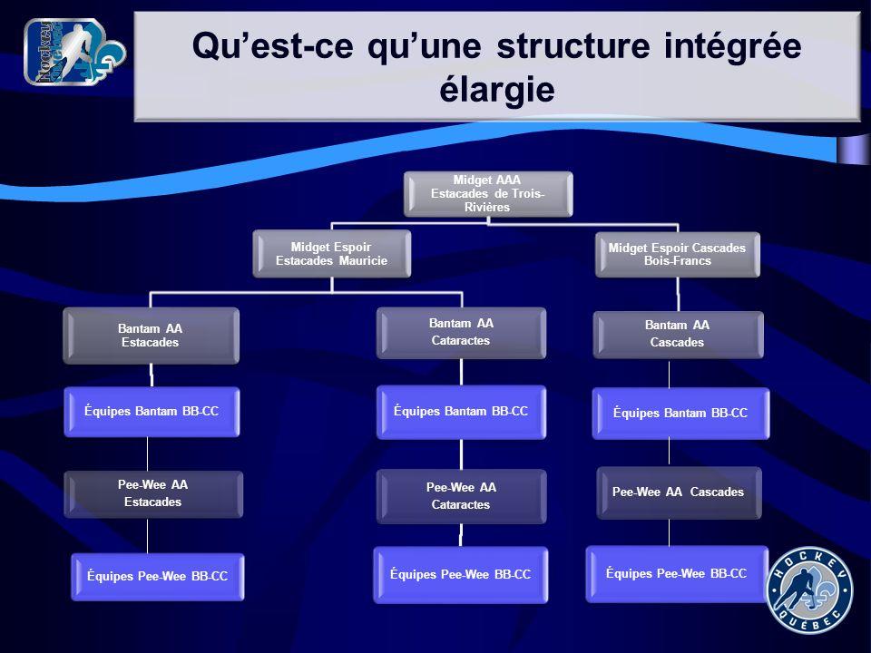 Qu'est-ce qu'une structure intégrée élargie