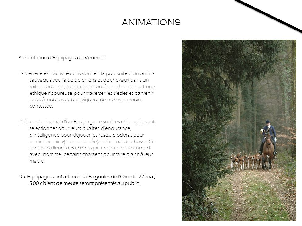 ANIMATIONS Présentation d'Equipages de Venerie :