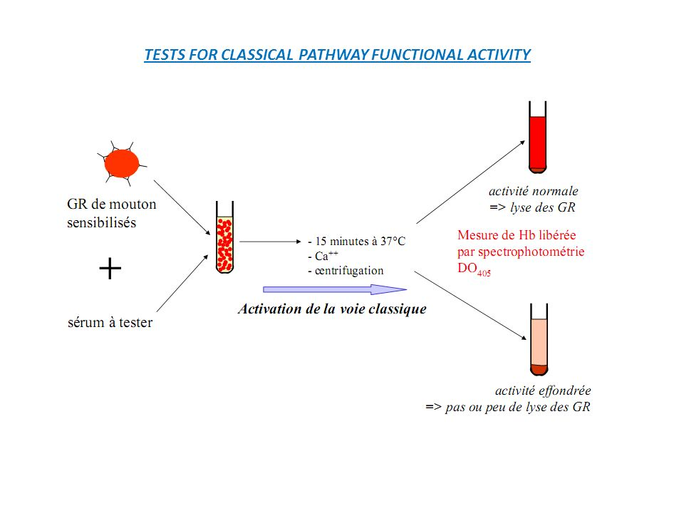 TESTS FOR CLASSICAL PATHWAY FUNCTIONAL ACTIVITY