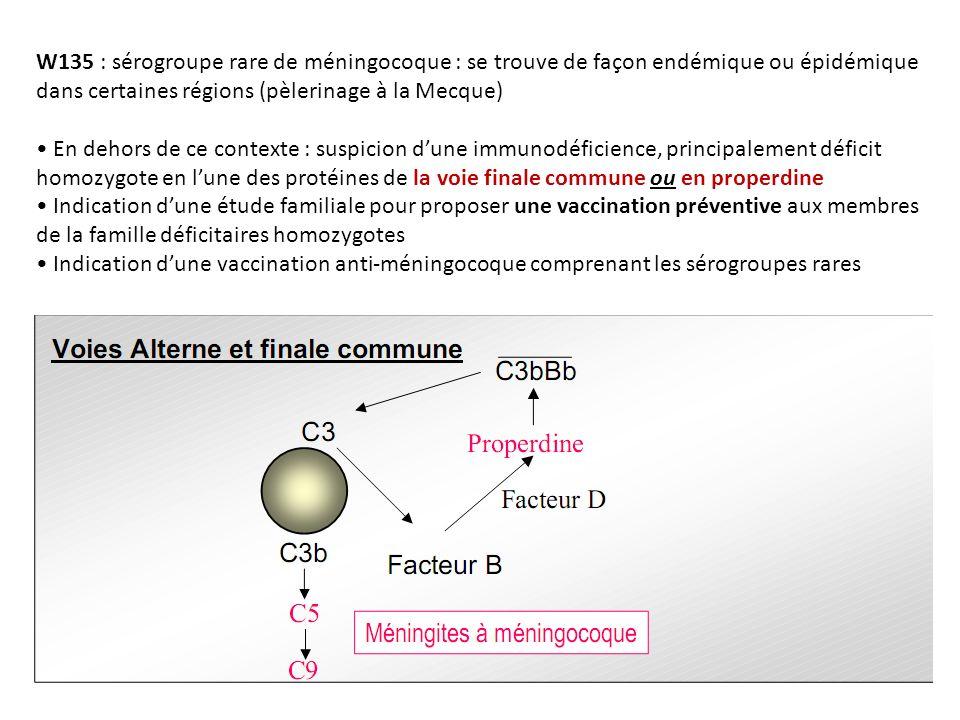 W135 : sérogroupe rare de méningocoque : se trouve de façon endémique ou épidémique dans certaines régions (pèlerinage à la Mecque)