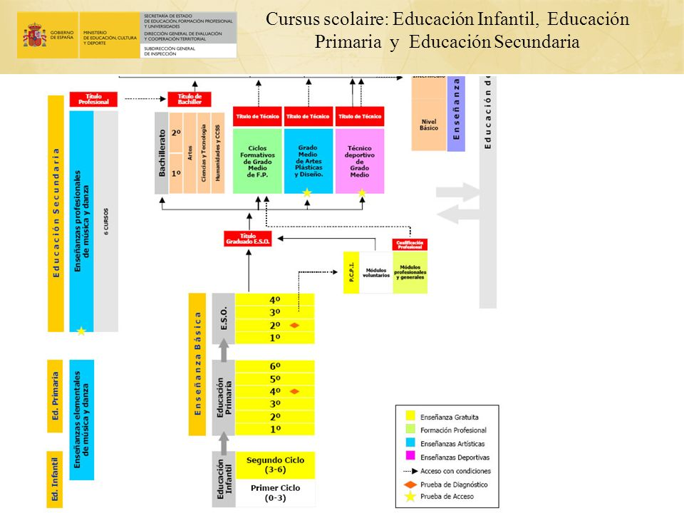 Cursus scolaire: Educación Infantil, Educación Primaria y Educación Secundaria