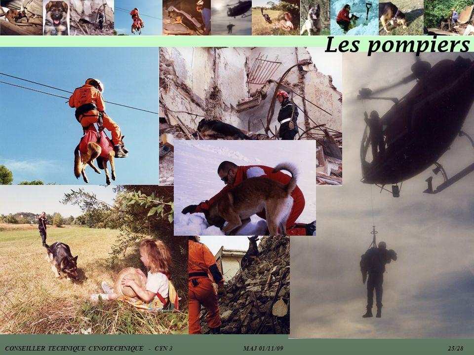Les pompiers CONSEILLER TECHNIQUE CYNOTECHNIQUE - CYN 3 MAJ 01/11/09 25/28.