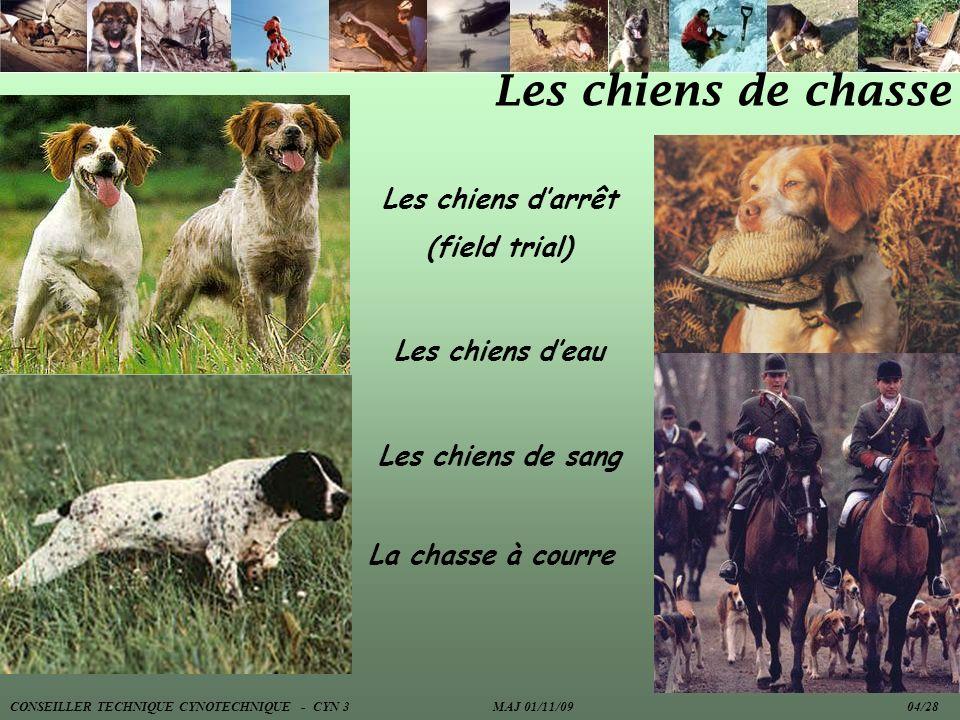 Les chiens de chasse Les chiens d'arrêt (field trial) Les chiens d'eau