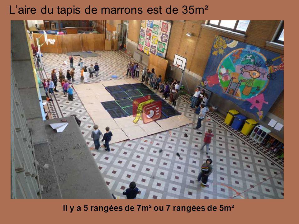 L'aire du tapis de marrons est de 35m²