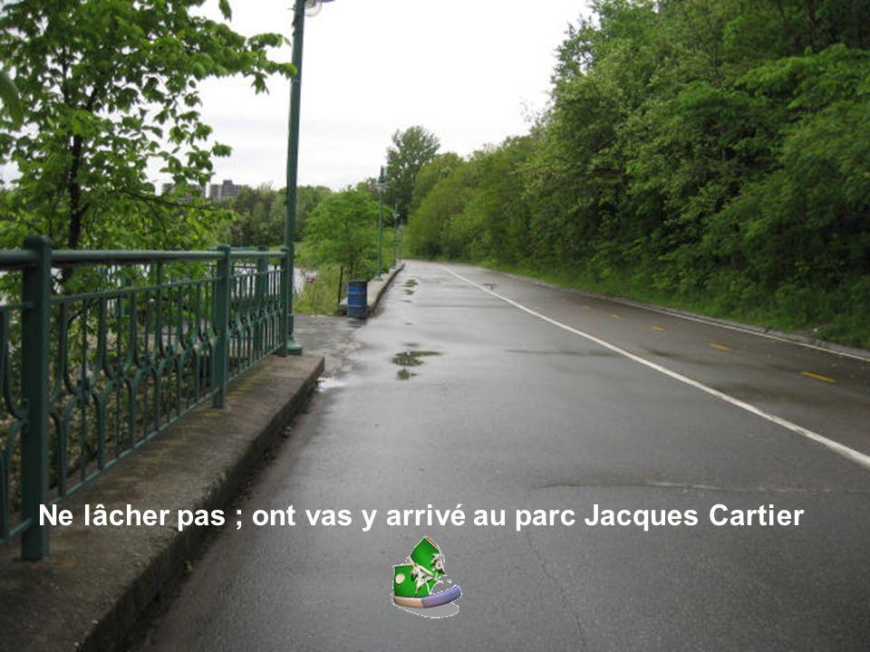 Ne lâcher pas ; ont vas y arrivé au parc Jacques Cartier