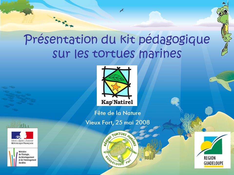 Présentation du kit pédagogique sur les tortues marines