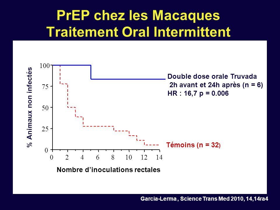PrEP chez les Macaques Traitement Oral Intermittent