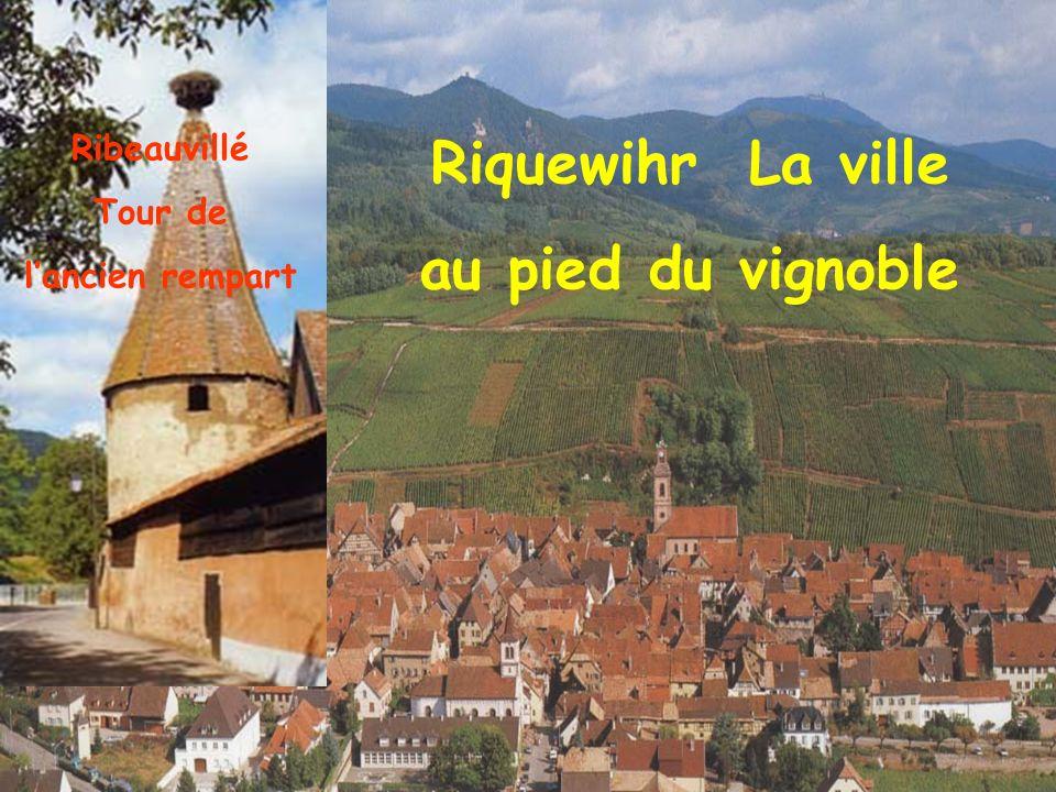 Riquewihr La ville au pied du vignoble Ribeauvillé Tour de