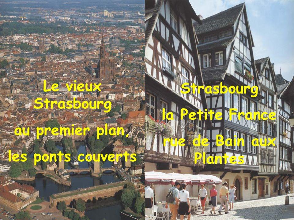 Le vieux Strasbourg au premier plan, les ponts couverts.