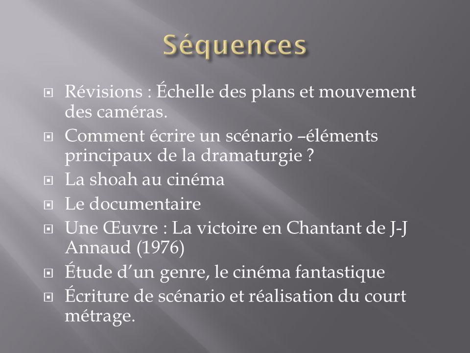 Séquences Révisions : Échelle des plans et mouvement des caméras.