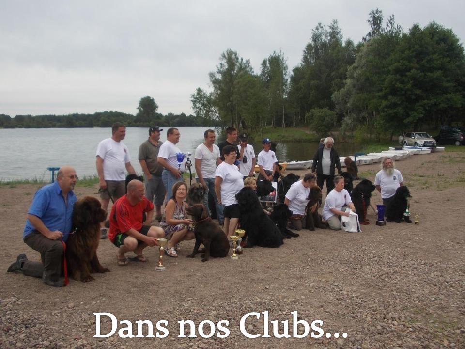 Dans nos Clubs…