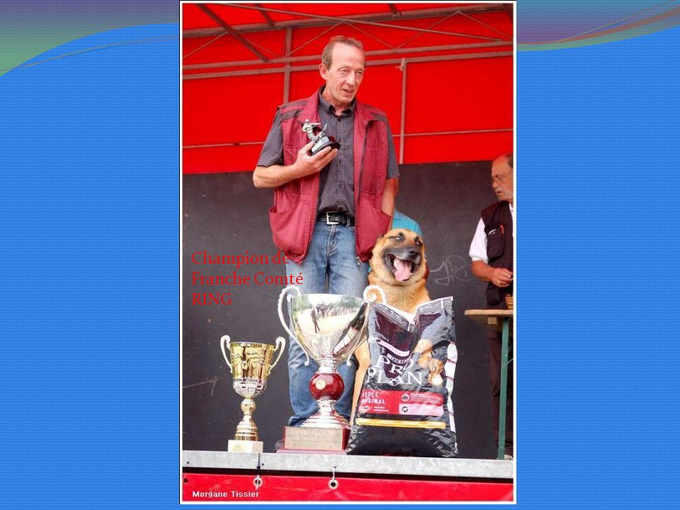 Champion de Franche Comté RING