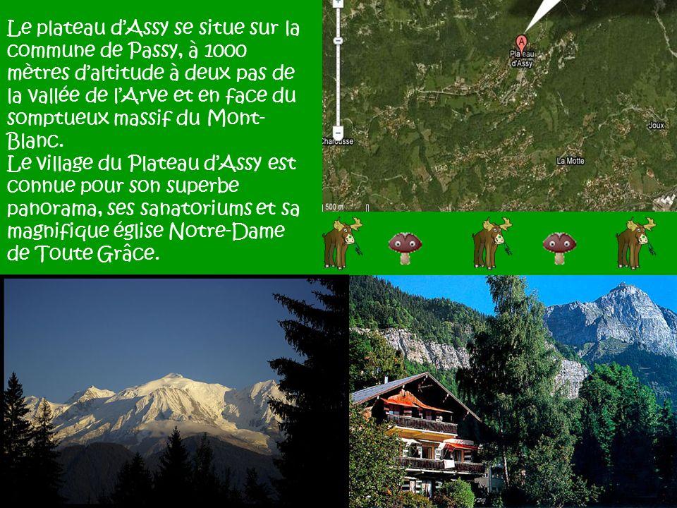 Le plateau d'Assy se situe sur la commune de Passy, à 1000 mètres d'altitude à deux pas de la vallée de l'Arve et en face du somptueux massif du Mont-Blanc.