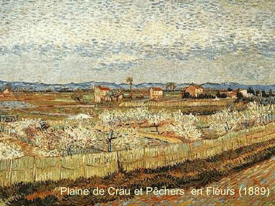 Plaine de Crau et Pêchers en Fleurs (1889)
