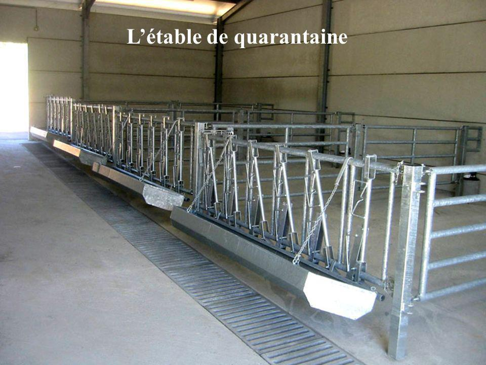 L'étable de quarantaine