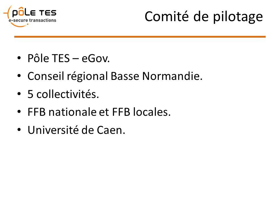 Comité de pilotage Pôle TES – eGov. Conseil régional Basse Normandie.