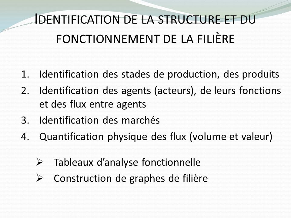 Identification de la structure et du fonctionnement de la filière
