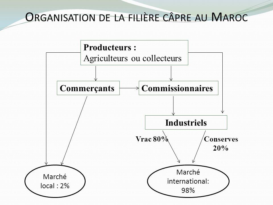 Organisation de la filière câpre au Maroc