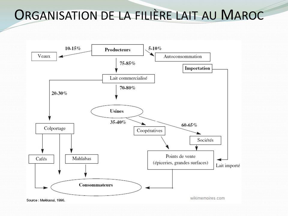 Organisation de la filière lait au Maroc