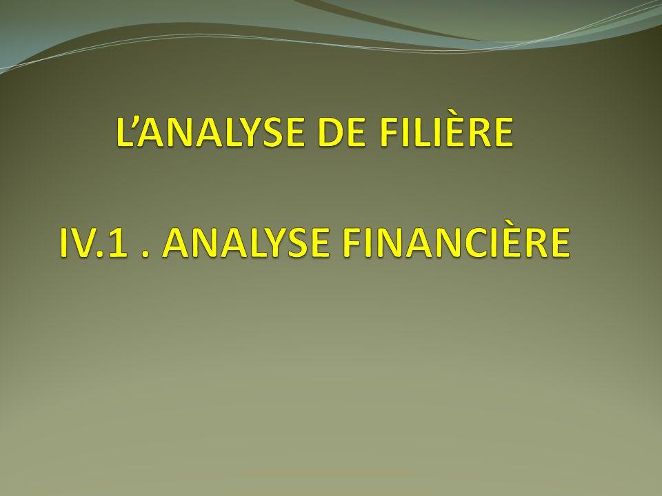 L'analyse de filière IV.1 . Analyse financière