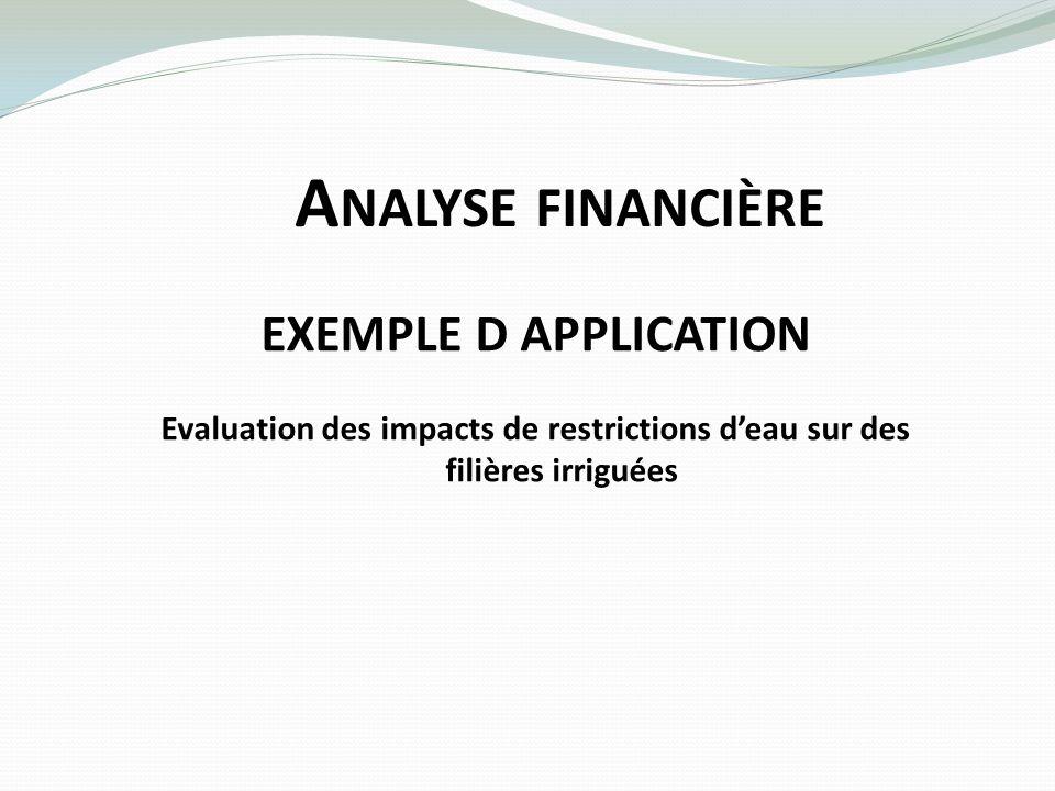 Analyse financière EXEMPLE D APPLICATION