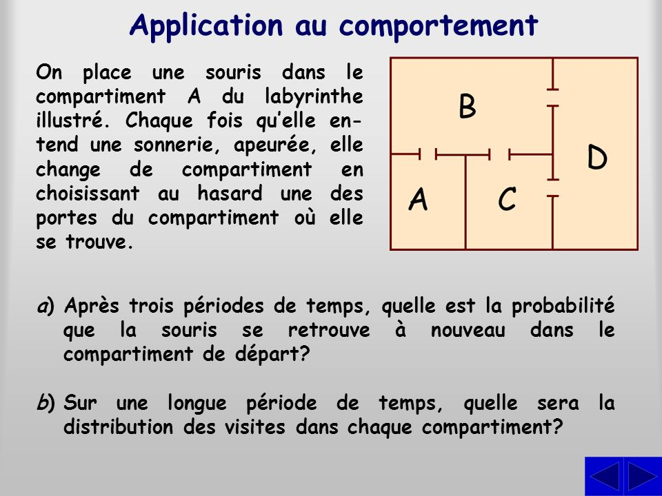 Application au comportement