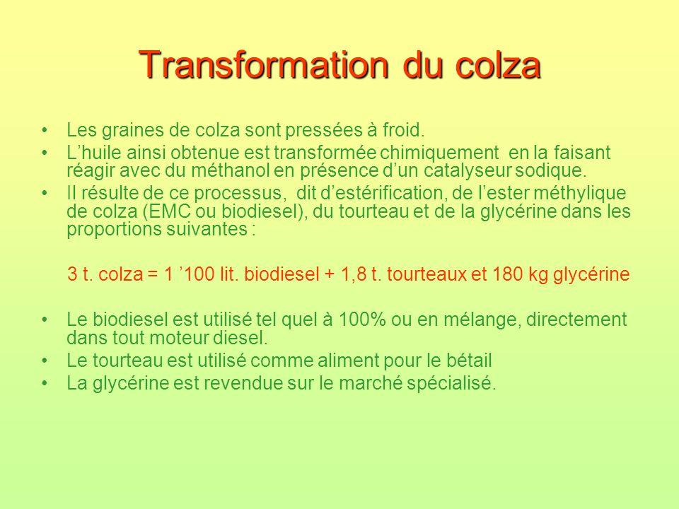 Transformation du colza