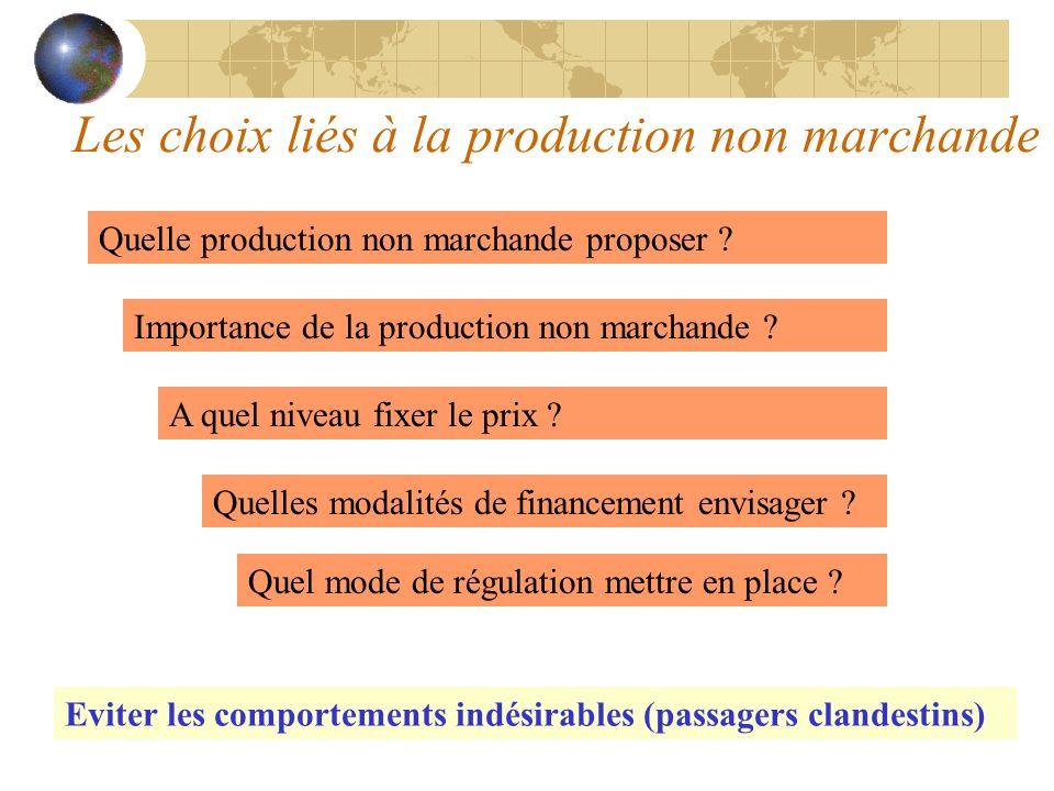 Les choix liés à la production non marchande